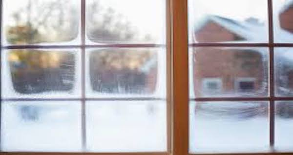 Block Out the Cold with ThermoKing Windows